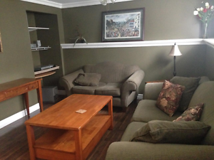 10 A Lancaster St Mount Pearl - Fully Furnished Avail Mar & Apr