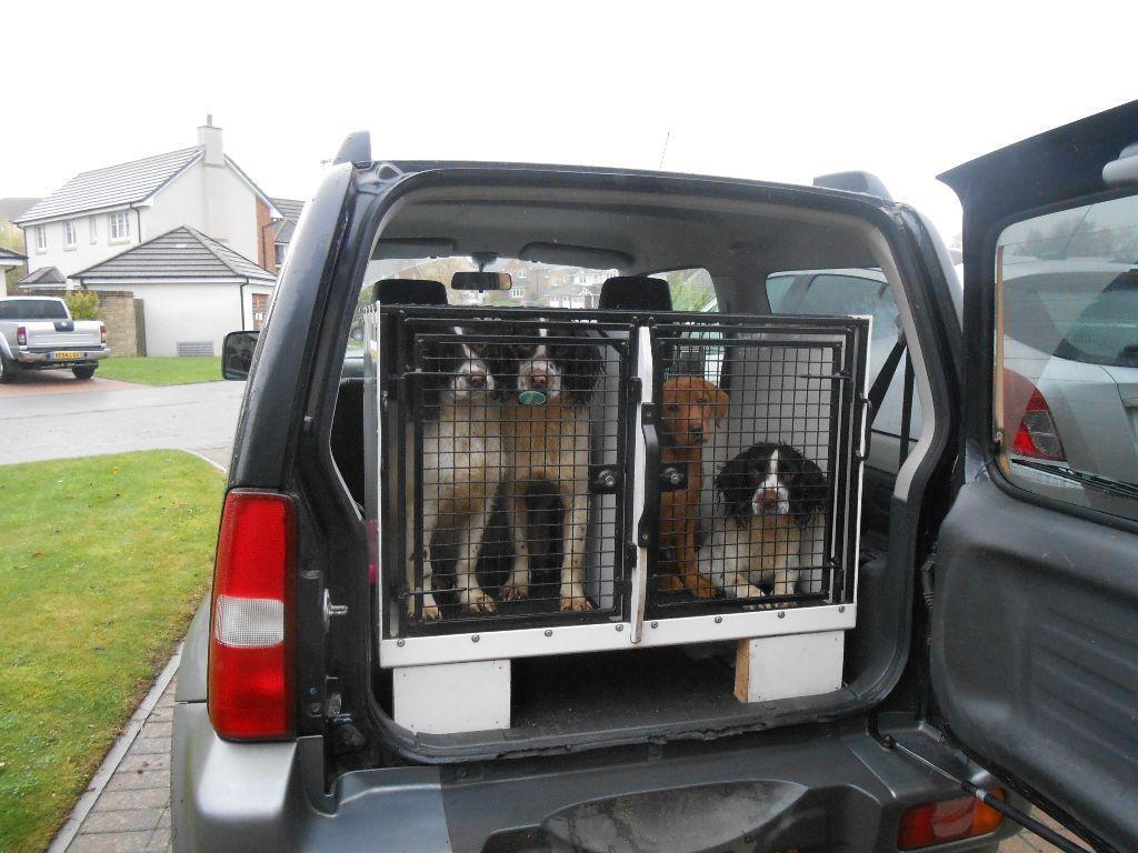 Hutch Puppy Deutsche Doggen Von Aspectus Startseite Cute