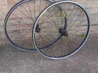 "26"" mountain AlexRims Doublewall wheelset"