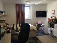 Gold studio flat in CB1