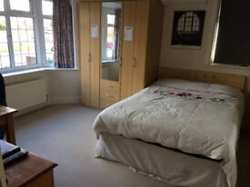 VERY LARGE DOUBLE ROOM IN DETACHED BUNGALOW, PARKING, OWN PRIVATE BATHROOM AND BIG GARDEN
