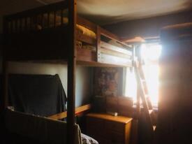 For sale loft bed single pine wood