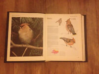 Orbis Encyclopedia of Birds Magazines