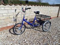 Pashley Tri-1 Adult 3 Wheel Cycle