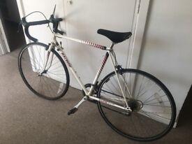 Raleigh bike (men's)