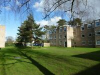 SELECTION OF 2 BEDROOM FLATS AVAILABLE TO RENT ON A MANAGED SITE CLOSE TO IPSWICH HOSPITAL.