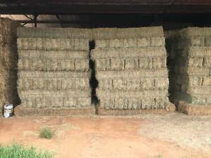 Lucerne and Oaten Hay for sale Cowra Cowra Area Preview