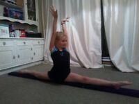 rolliebeamz gymnastics rollout balance beam black suedette NEW