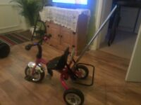 Trike tricycle push a long