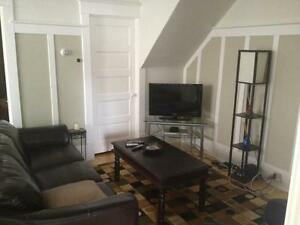 Amazing 1 bd FULLY FURNISHED with private yard Regina Regina Area image 1