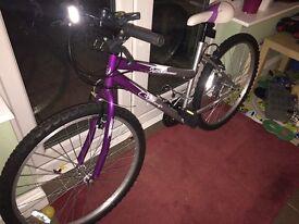 Ladies/Girls Bike. Excellent condition