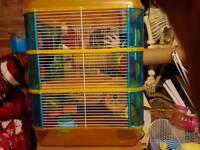 Hamster / Gerbil cage