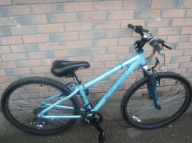 APOLLO LADY MOUNTAIN BIKE