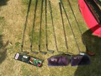 Left handed golf clubs and Head bag