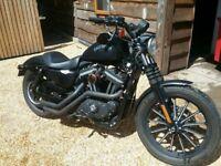 IRON 883 XL N 13. Matte black.