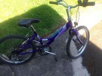 "Raleigh girls bike 18"" wheels 5 gears , suitable age is 6-8years old,fully working order"