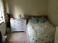 Large double bedroom in friendly house share with two other professionals - suit professional female