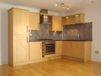 A NEWLY REFURBISHED & EXTENDED 3 BED 1 BATH FLAT IN UPTON PARK MINS. TO THE STATION