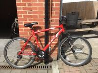 Second hand mountain bike include everything for sale !!