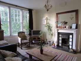 Double room in spacious sw16 Victorian property