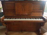 Schreiber Piano - Stunning