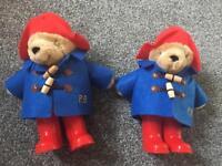 Paddington Bears 🐻