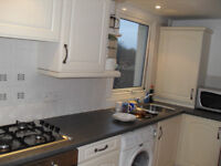 1 bedroom flat with allowcated parking to let