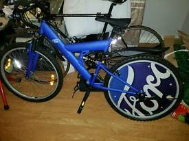 Ford moutain bike
