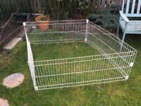 Outdoor guinea pig run - free