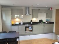Flatmate wanted for 2 bedroom modern flat