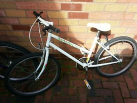 both bicycle in good working condition
