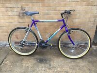 Mens Peugeot Hybrid Mountain Bike in GOOD Condition