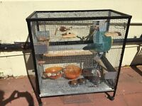 Big Chinchilla degu rat cage plus accessories and toys