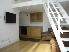 Modern 1/2 bedroom house with en-suit bathroom and loft room very close to Manor House tube Station