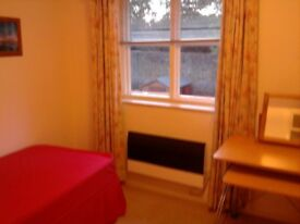 bedsit room to rent £ 550 inclussive