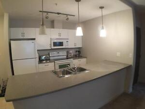 Furnished 2 bedroom Condo  in the desirable Peaks of Eagle Ridge