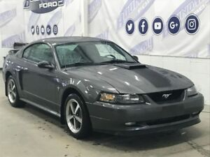 2003 Ford Mustang GT Premium Mach 1 4.6L