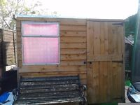 6ft x 4ft garden shed only 6months old .buyer to dismantle.collection only.torquay