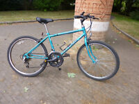"Raleigh Mountain Bike with 24"" wheels"