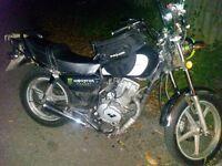 125cc cruiser lexmoto