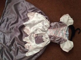 GIRLS DRESSING UP OUTFIT - DOUBLE SIDED CINDERELLA DRESS