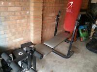 Multi weight bench & weights