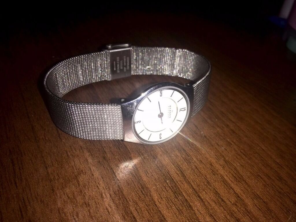 Womens Skagen Watch