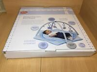 Deluxe Play Gym Blue Puppy new in box
