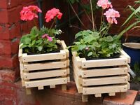planters with asstd plants included