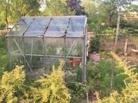 Greenhouse for £5 - Collection from Morley (buyer to dismantle and take away)