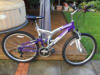 "Mountain bike child's 18"" frame"