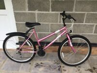 GIRLS/LADIES BICYCLE. (Never been used)