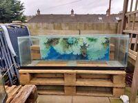 Fish tank 4foot long