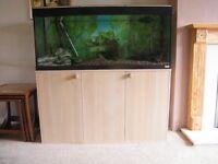 fluval fish tank complete set up